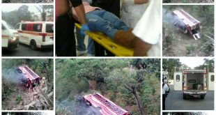 Bus Cae a barranco